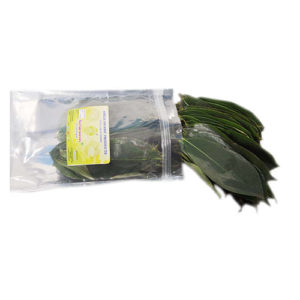 Soursop Fresh Leaves | Amelia Organic Products
